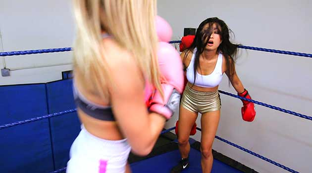 """New """"Boxing Fantasies"""" and """"Catfight Fantasies"""" from Alex Bettinger"""